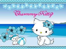 Disque azyme Charmmy Kitty plage a4