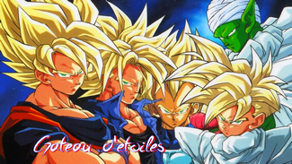 Plaque azyme Dragon Ball Z