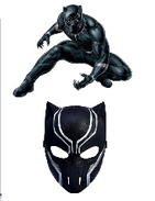 Kit Black Panther