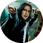 Disque azyme Harry Potter